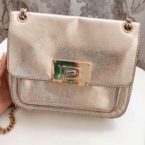 Soft Gold Michael Kors bag